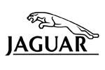 Jaguar car covers